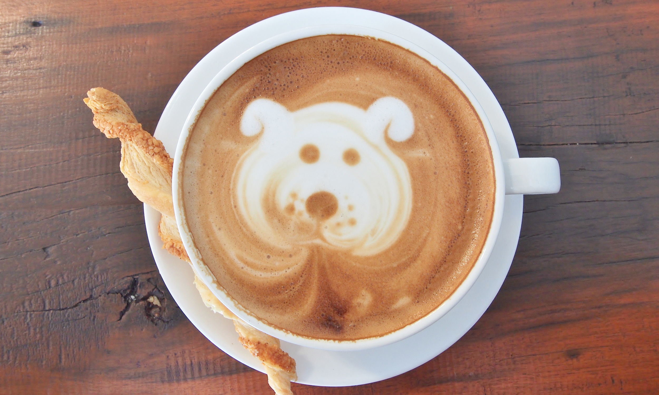 canines and coffee 2